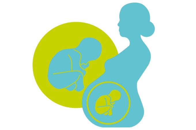 ilustração mostra gestante de perfil com representação do bebê dentro da barriga